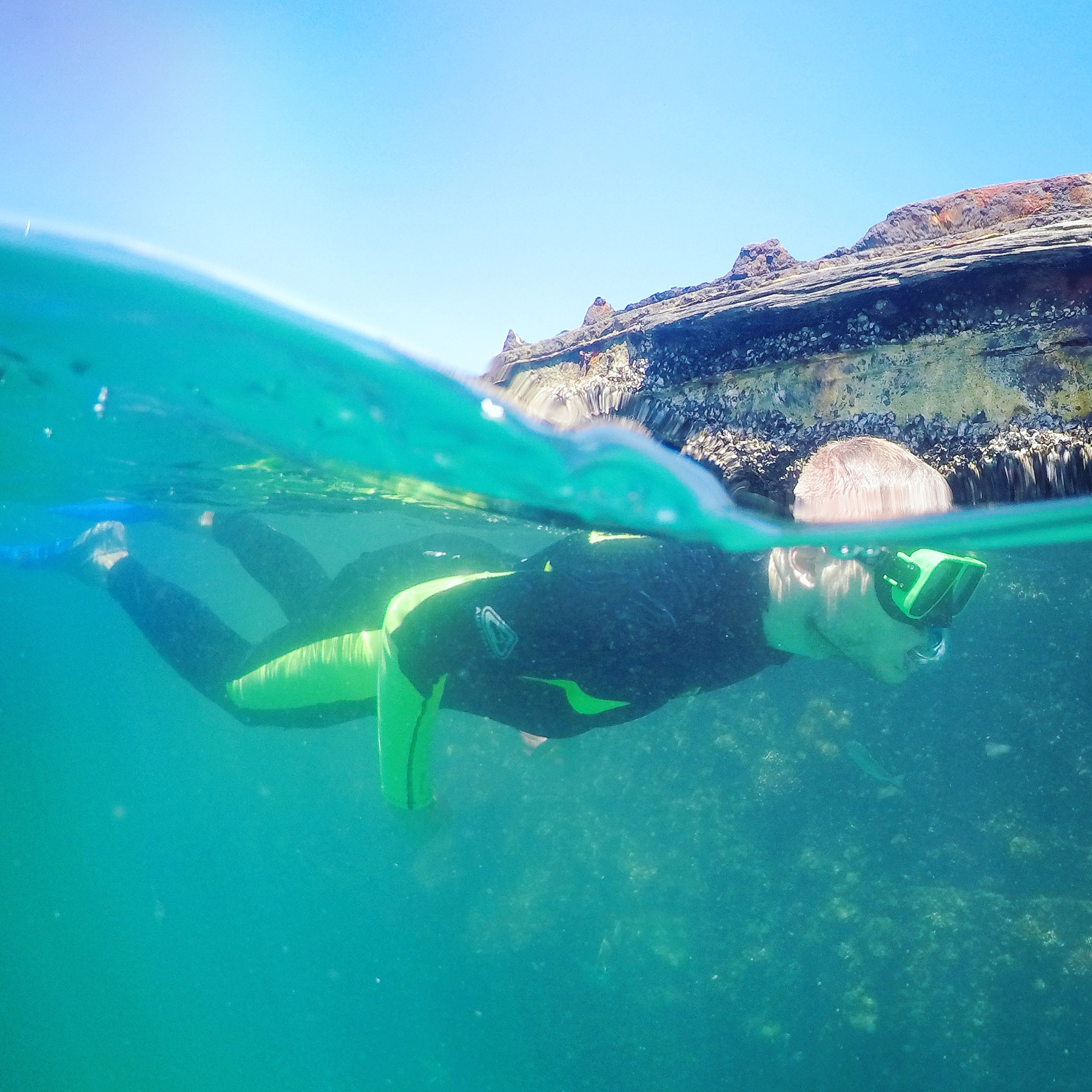 Snorkelling the Tangalooma Wrecks